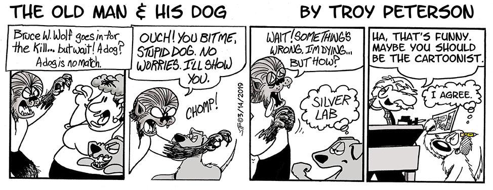 Hi-yo Silver Lab... Awaaaaaay!